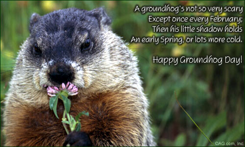 Message On Happy Groundhog Day Wishes Image