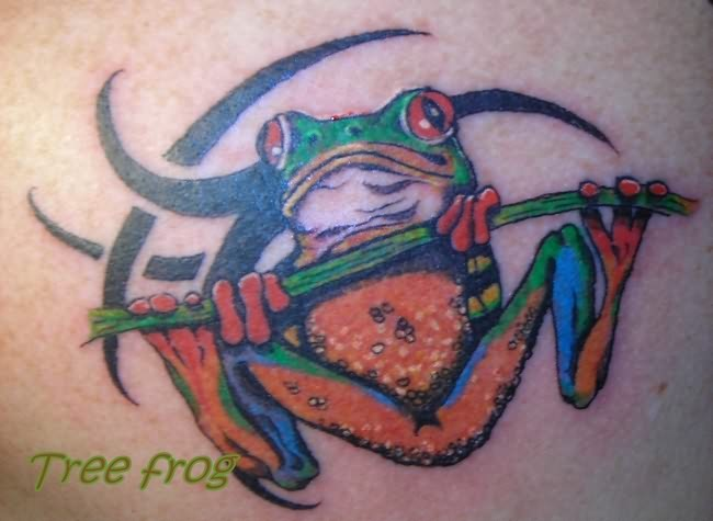 Nice Extreme Frog Tattoo Design For Boys