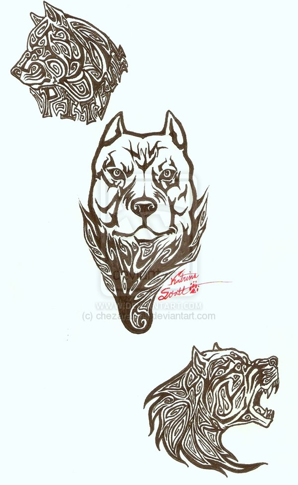 Nice Tribal Pit-bull Tattoo Design For Boys