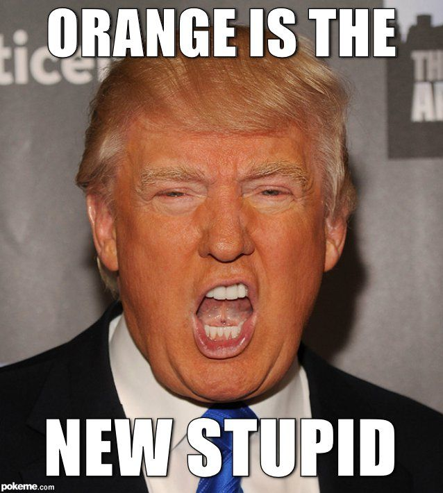 Orange Is The New Stupid Donald Trump Memes