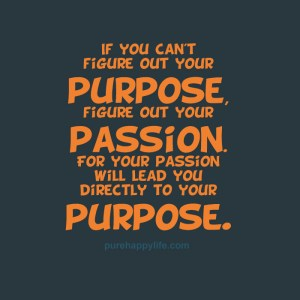 Passion Quotes And Sayings 4