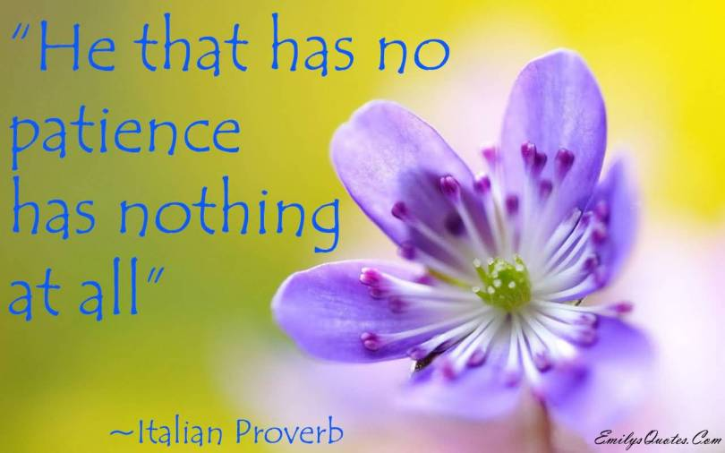 Patience Quotes he that has no patience has nothing at all