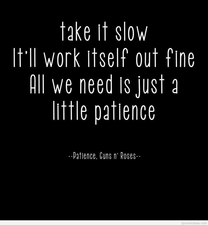 Patience Quotes take it slow it'll work itself out fine all we need is just a little patience