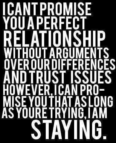 Relationship Quotes i can't promise you a perfect relationship without arguments over our differences