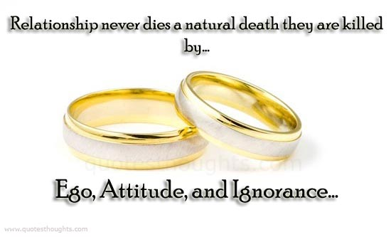 Relationship Quotes relationship never dies a natural death they are killed by ego attitude and