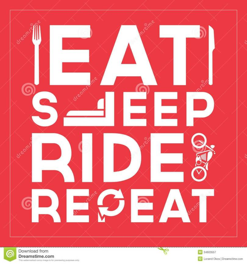 Ride Quotes And Sayings 11