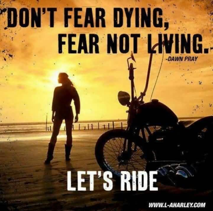 Ride Quotes And Sayings 12
