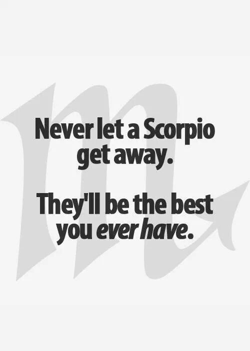 Scorpio Quotes Never let a Scorpio get away they'll be the best you ever have