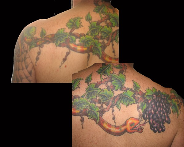 Sensation Snake On Grapes Branch Tattoo Design For Boys