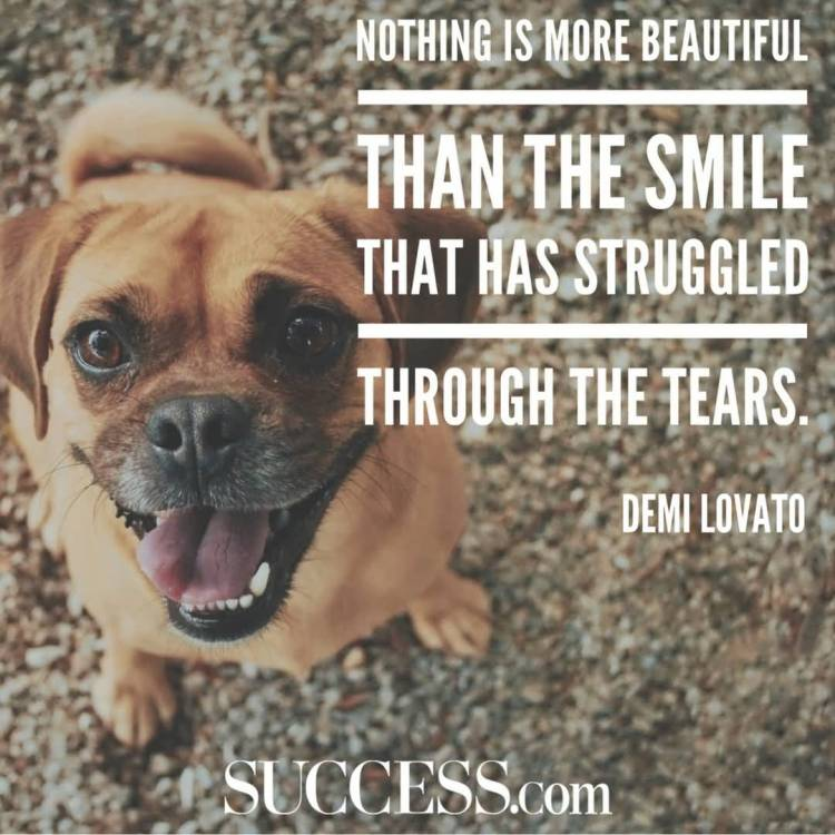 Strength Quotes Nothing Is More Beautiful Than The Smile That Has Struggled Through The Tears