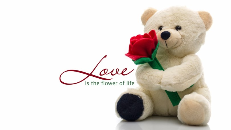 Wishing You Love Message Happy Teddy Day Wishes Image