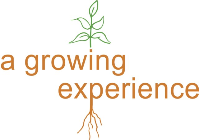 experience sayings a growing experience