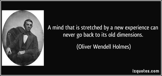 experience sayings a mind that is stretched by a new experience can never go back to its old dimensions.