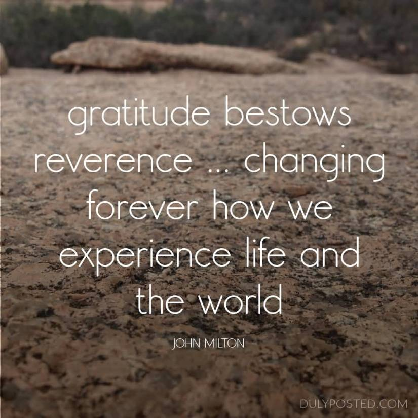 experience sayings gratitude bestows reverence changing forever how we experience life and the world