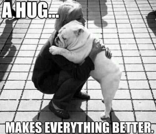 A hug makes every think better Hug Memes