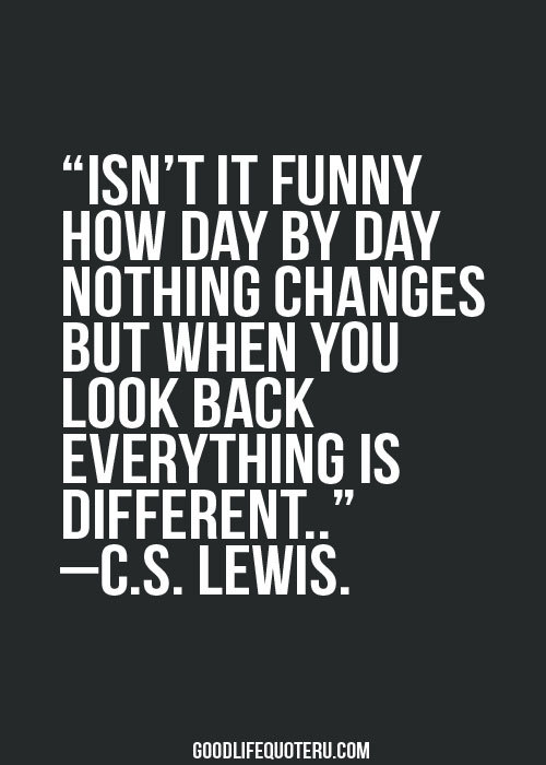 Day Quotes isn't it funny how day by day nothing
