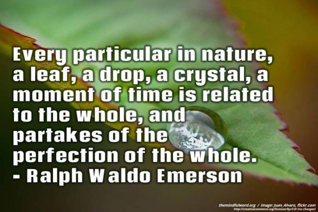 Earth Day Quotes every particular in nature a leaf a drop a crystal a moment