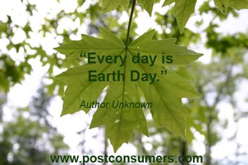 Earth Day Quotes everyday is earth day