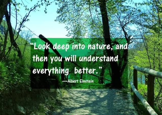 Earth Day Quotes look deep into nature and then you will
