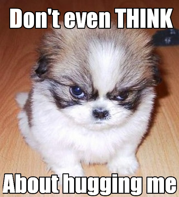 Funny Hug Memes Don't even think about hugging me