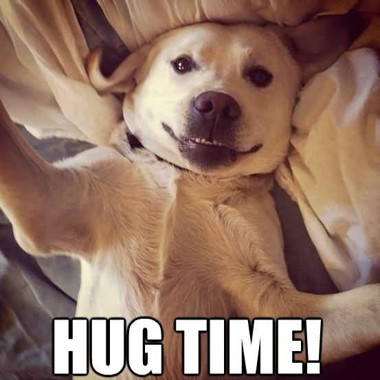 Funny Hug Meme hug time