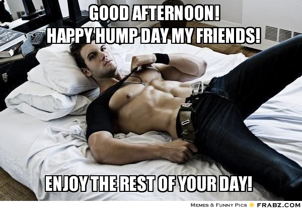 Happy Hump Day Meme Funny : Very funny good afternoon memes images photos picsmine