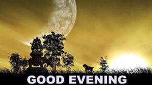 Good Evening Meme good evening (3)