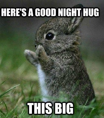 Good Evening Memes here's a good night hug this big