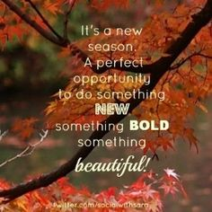 Goodbye Summer Quotes its a new season opportunity to do something