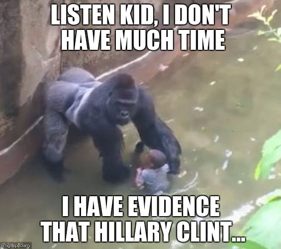 Harambe Memes Listen Kid, I Don't Have Much Time I Have Evidence That Hillary Clint..