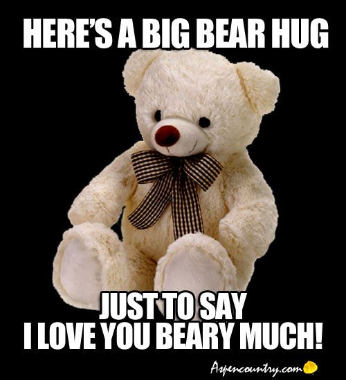 Hug Meme Heres a big bear hug just to say i love you beary much