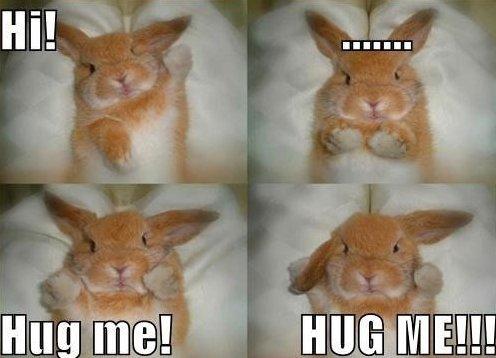 Hug Meme hi hug me hug me