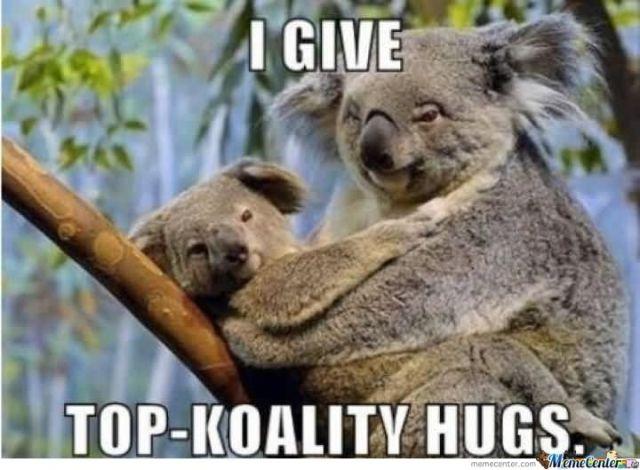 Hug Meme i give top koality hugs