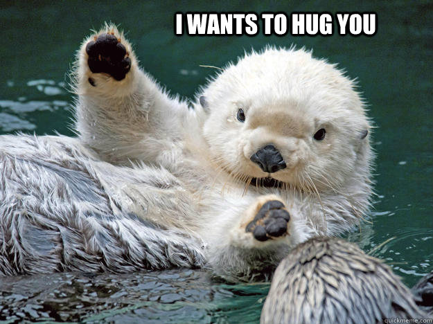 Hug Memes I wants to hug you