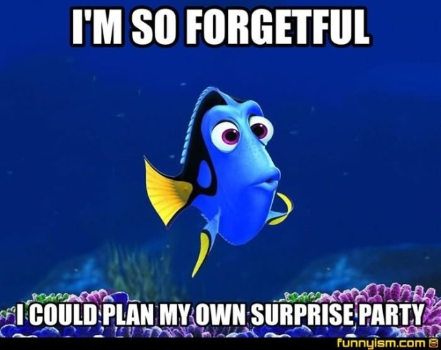 I'm so forgetful i could plan my own surprise party Meme