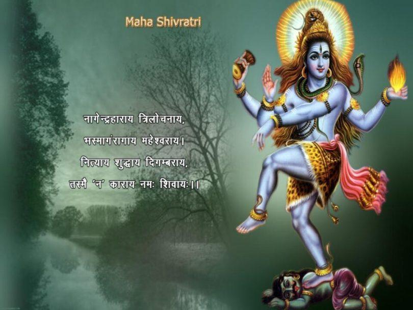 Maha Shivaratri 022