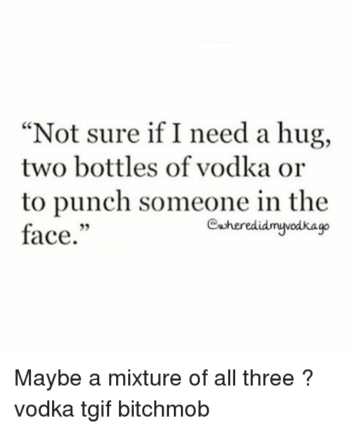 Not sure if i need a hug two bottles of vodka or to punch Hug Meme