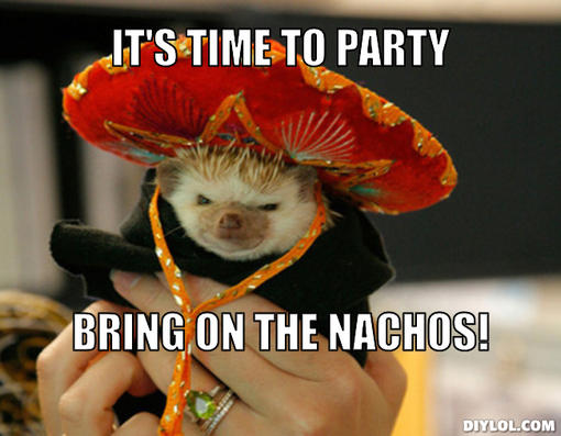 Party Meme its time to party bring on the nachos