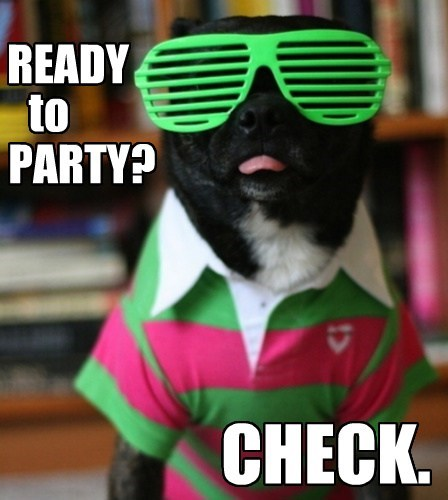 Ready to party check Party Memes