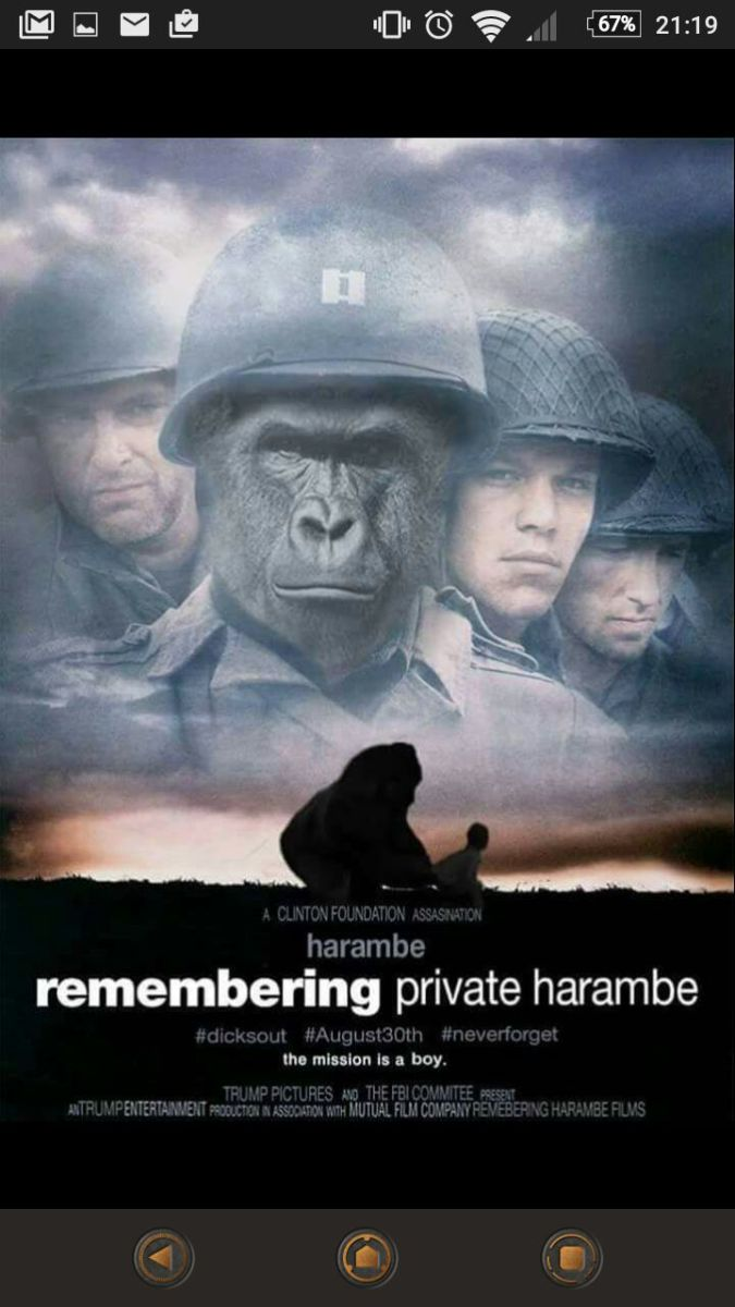 Remembering Private Harambe Harambe Meme