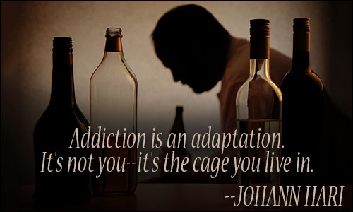 addiction Quotes addiction is an adaptation its not