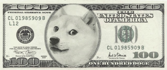 doge meme the united states of America note