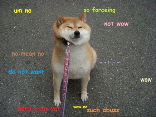 doge meme um no so forcing not wow no mean no