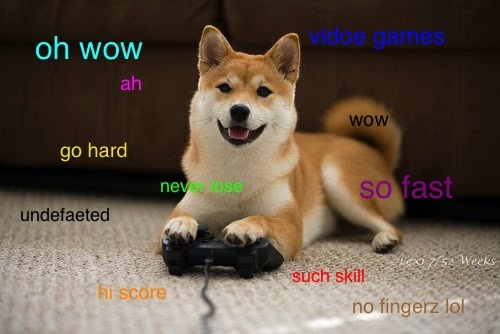 oh wow video games ah go hard wow doge meme
