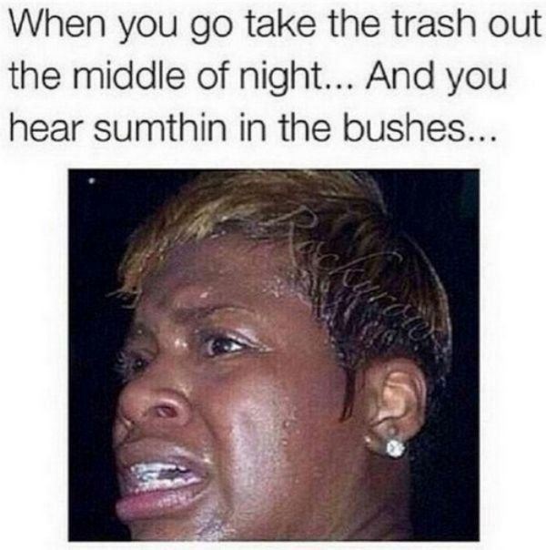 when you go take the trash out the Dank meme