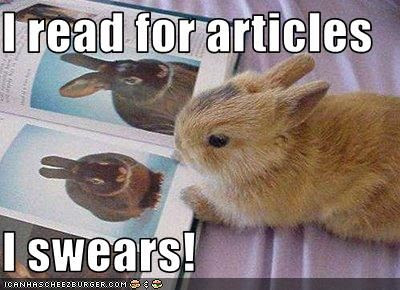 Bunnies Meme I read for articles i swears
