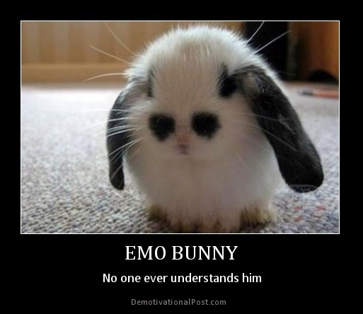 Bunnies Memes emo bunny no one ever understand him