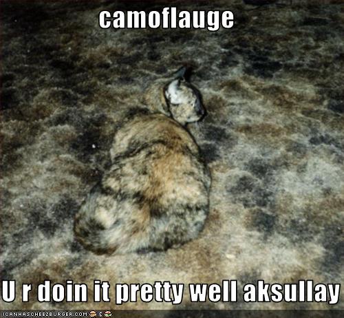 Camouflage Meme Camoflauge u r doin it pretty well aksullay