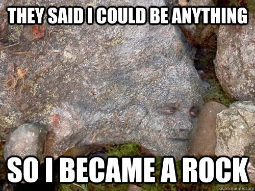 Camouflage Memes they said i could be anything so i became a rock