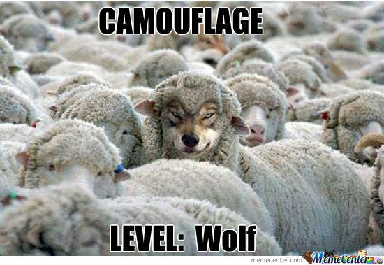 Camouflage level wolf Camouflage Memes